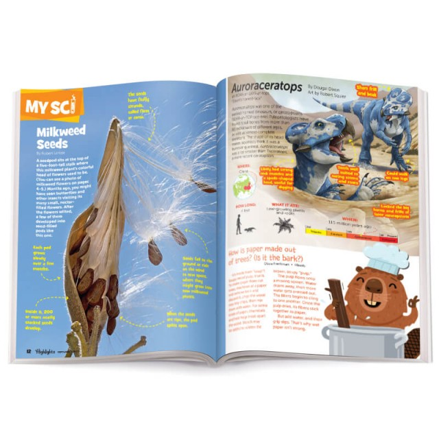 Highlights Magazine Interior 3