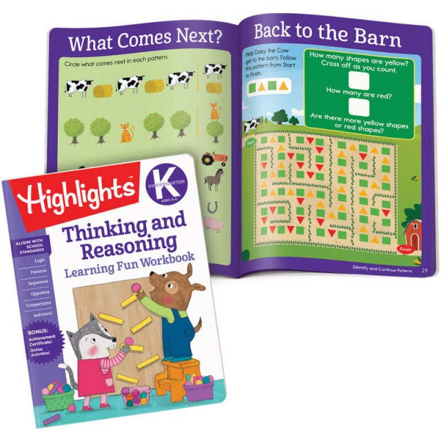 Thinking and Reasoning book and lessons about patterns